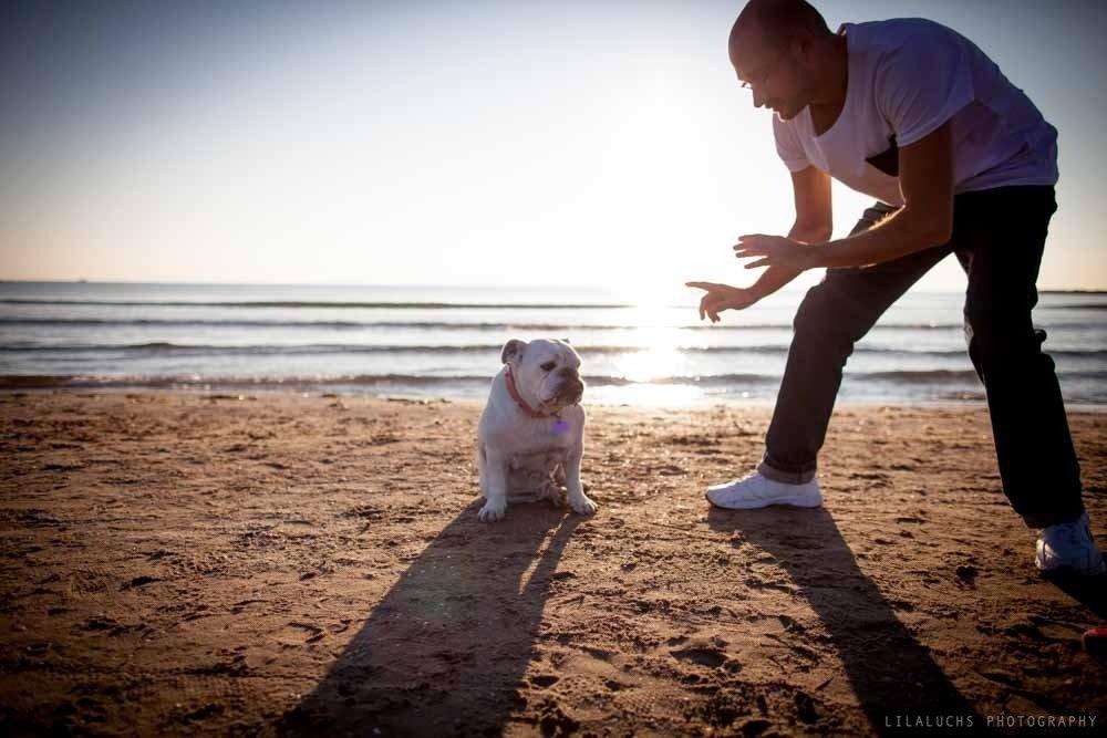 Fotografos-books-perros-Valencia--Playa_MG_3386