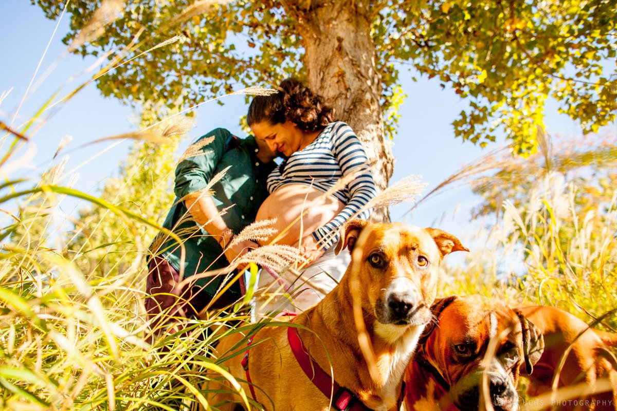 Fotos de embarazada en Valencia con perro