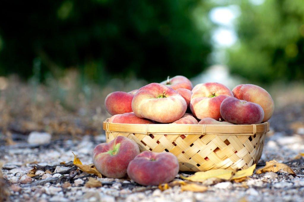 Fotografía de producto Fruta de hueso, Paraguayo